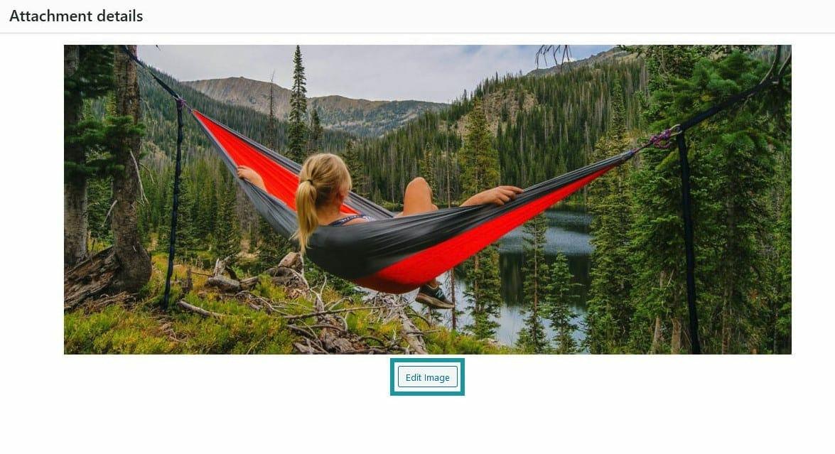 Choose The Edit Image Option To Edit Image