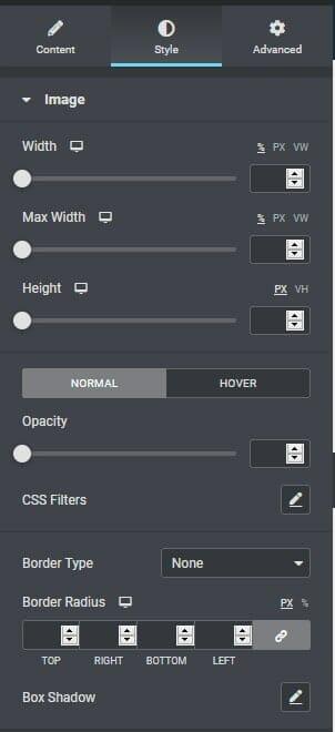 Style Tab Interface Of Image Widget